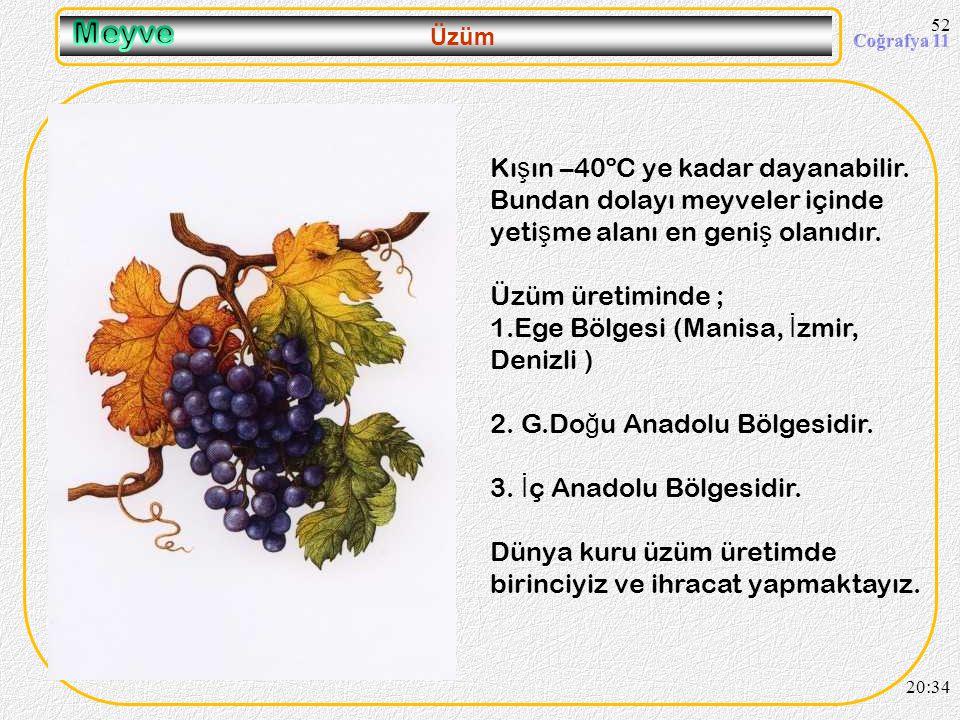 51 Aspir 20:36 Tohumlarında % 30-50 arasında ya ğ bulunan, Linoleik ve Oleik, zeytin ya ğ ı kalitesinde) olmak üzere 2 ayrı tipi olan, ya ğ ı yemeklik