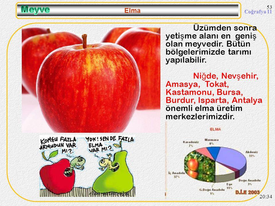 52 Üzüm 20:36 Kı ş ın –40ºC ye kadar dayanabilir. Bundan dolayı meyveler içinde yeti ş me alanı en geni ş olanıdır. Üzüm üretiminde ; 1.Ege Bölgesi (M