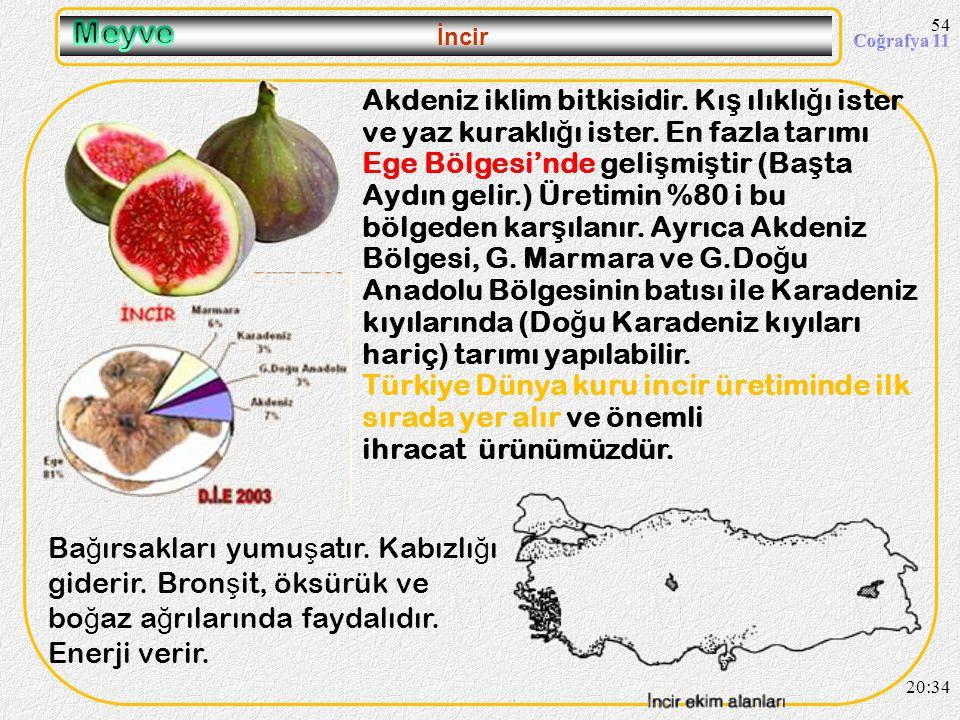 53 Elma 20:36 Üzümden sonra yeti ş me alanı en geni ş olan meyvedir. Bütün bölgelerimizde tarımı yapılabilir. Ni ğ de, Nev ş ehir, Amasya, Tokat, Kast