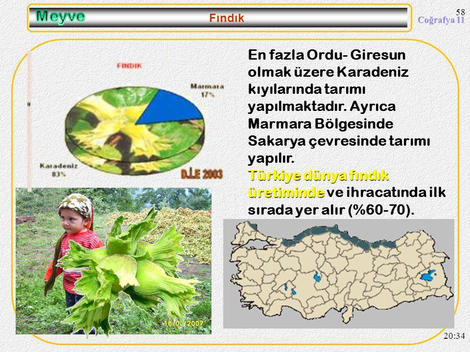 57 Muz 20:36 ülkemizde sadece Anamur, Bozyazı, Gazipa ş a ve Alanya ilçeleri ile çevresinde Musa Cavendish dedi ğ imiz bodur muz üretimi yapılmaktadır