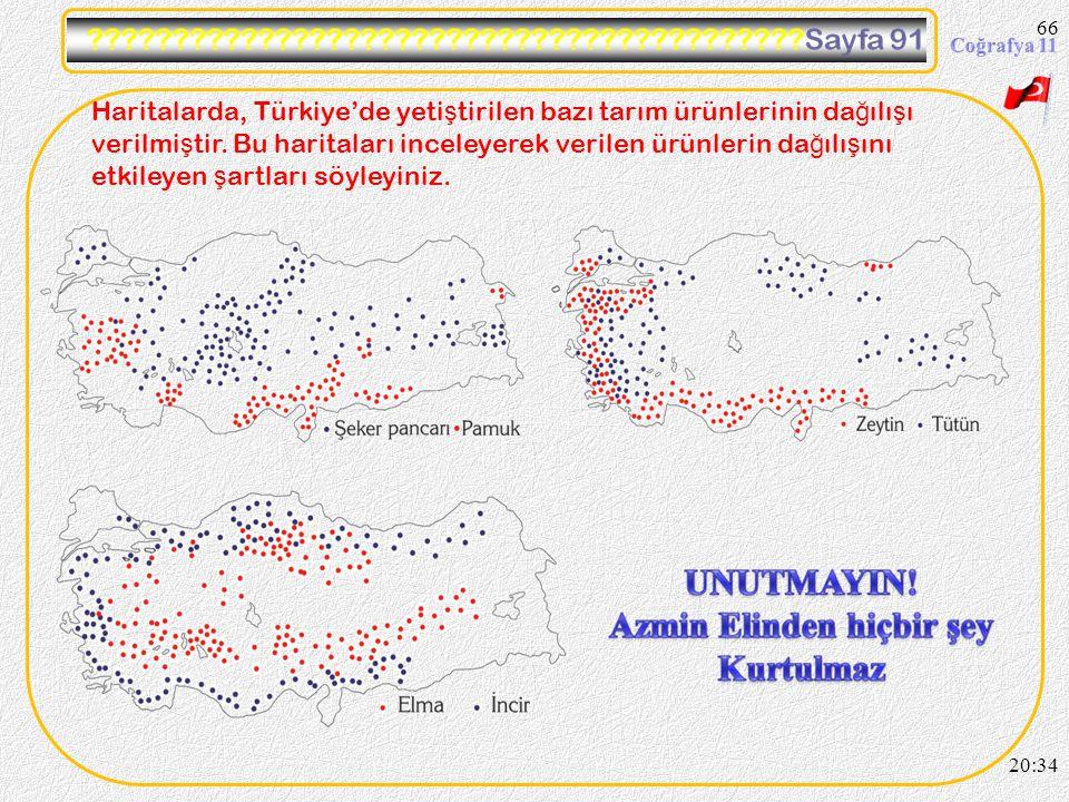 65 20:36 Haritalarda, Türkiye'de yeti ş tirilen bazı tarım ürünlerinin da ğ ılı ş ı verilmi ş tir. Bu haritaları inceleyerek verilen ürünlerin da ğ ıl