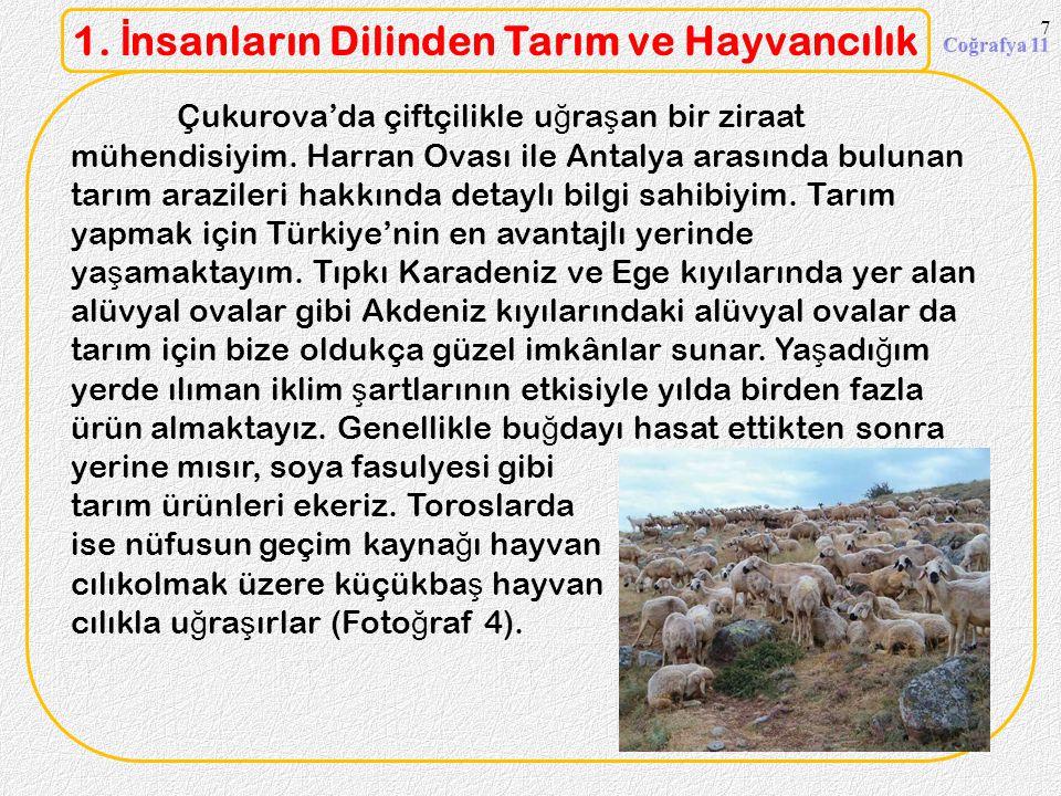 Erzurum ve Kars civarında ya ş ayanlar ise büyükba ş hayvancılıkla u ğ ra ş ırlar (Foto ğ raf 2). Hayvanları otlatmak için meralardan faydalanıyorlar.