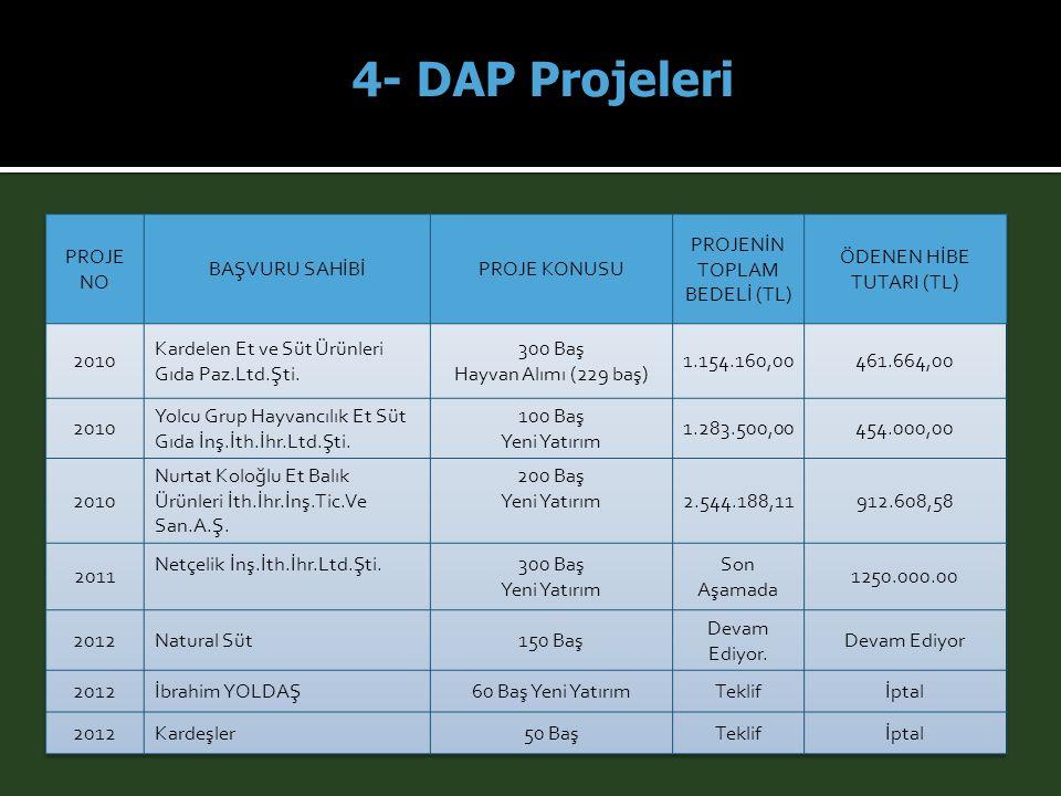 4- DAP Projeleri