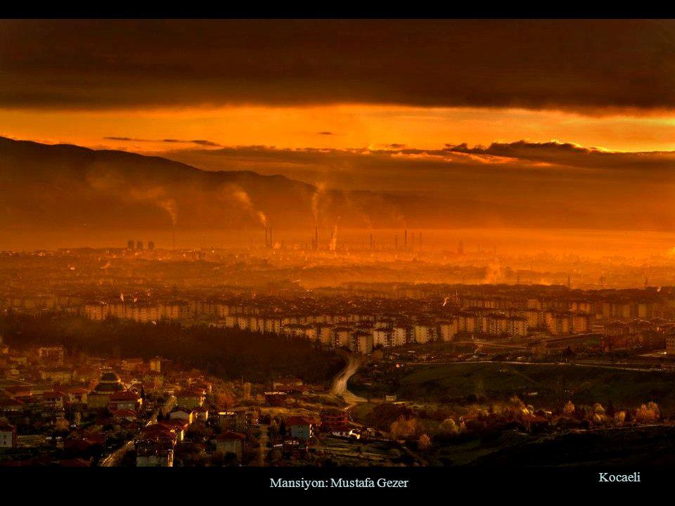 Mansiyon: Mustafa Gezer Kocaeli