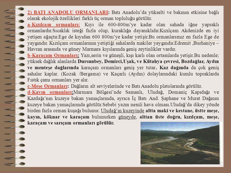 b-Karışık ormanlar: Orta ve Doğu Karadeniz bölümlerinde kuzey yamaçlarda 1000-1500m arasında görülür. Geniş yapraklı ağaçlardan kayın, iğne yapraklıla