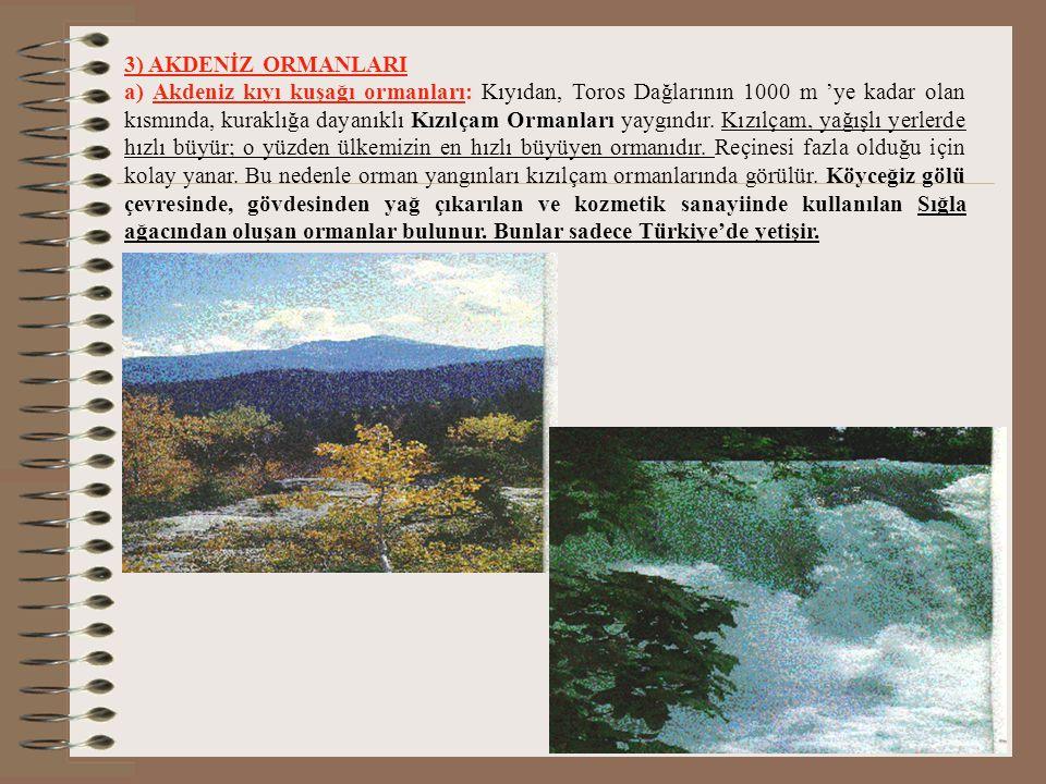 2) BATI ANADOLU ORMANLARI: Batı Anadolu'da yükselti ve bakının etkisine bağlı olarak ekolojik özellikleri farklı üç orman topluluğu görülür. a-Kızılça