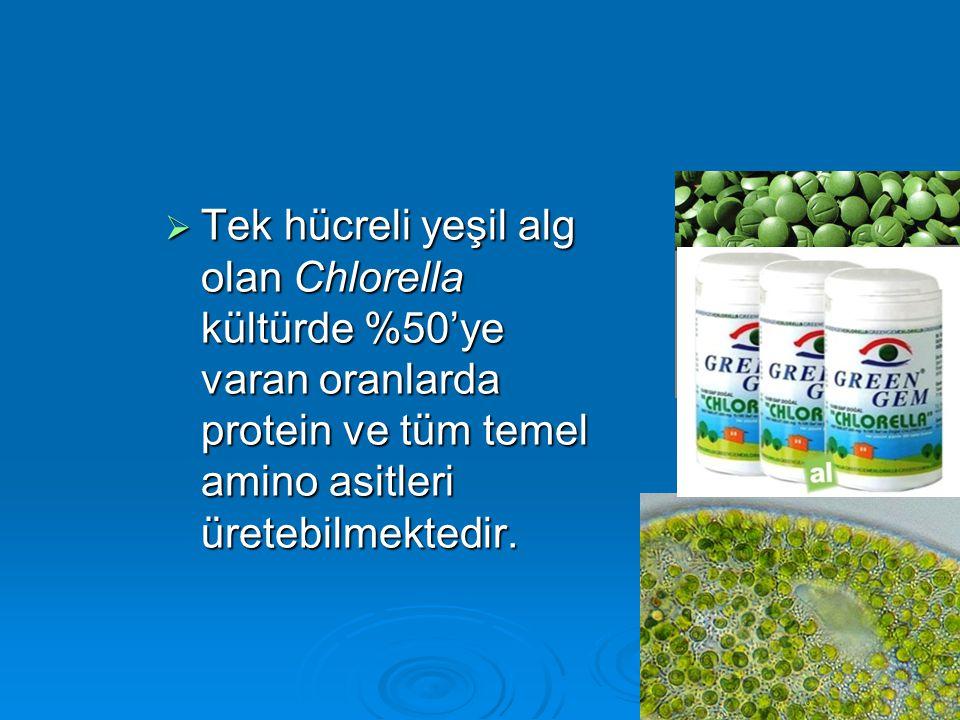  Tek hücreli yeşil alg olan Chlorella kültürde %50'ye varan oranlarda protein ve tüm temel amino asitleri üretebilmektedir.