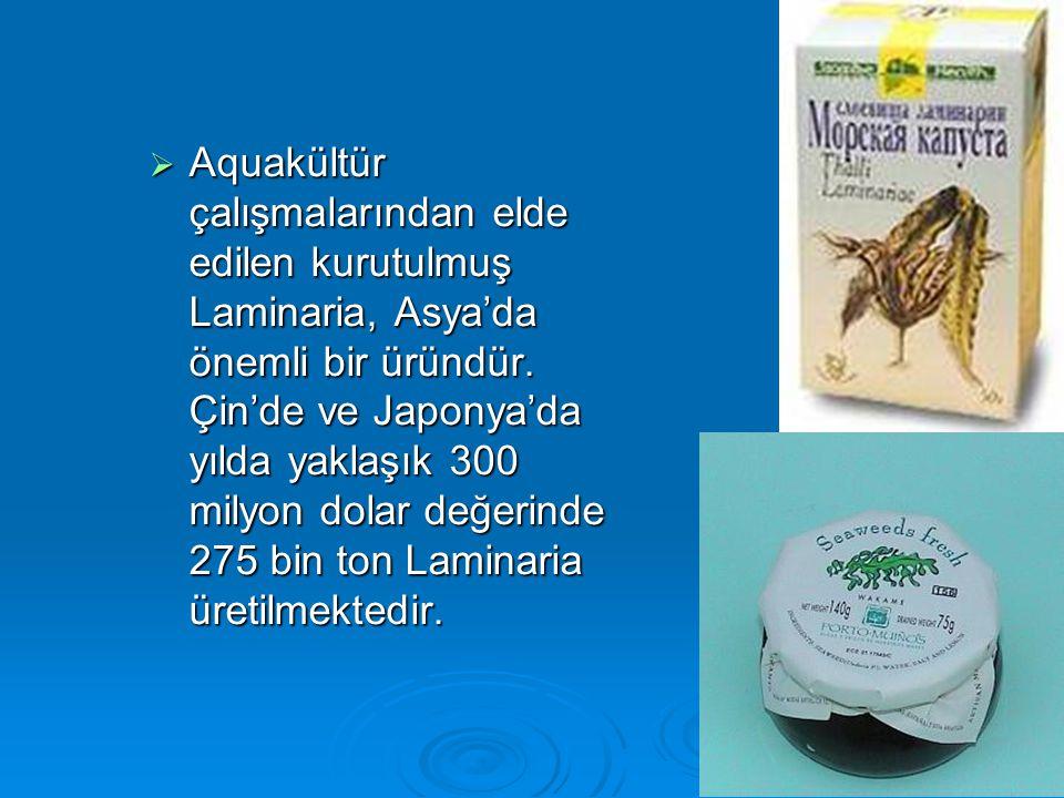  Aquakültür çalışmalarından elde edilen kurutulmuş Laminaria, Asya'da önemli bir üründür. Çin'de ve Japonya'da yılda yaklaşık 300 milyon dolar değeri