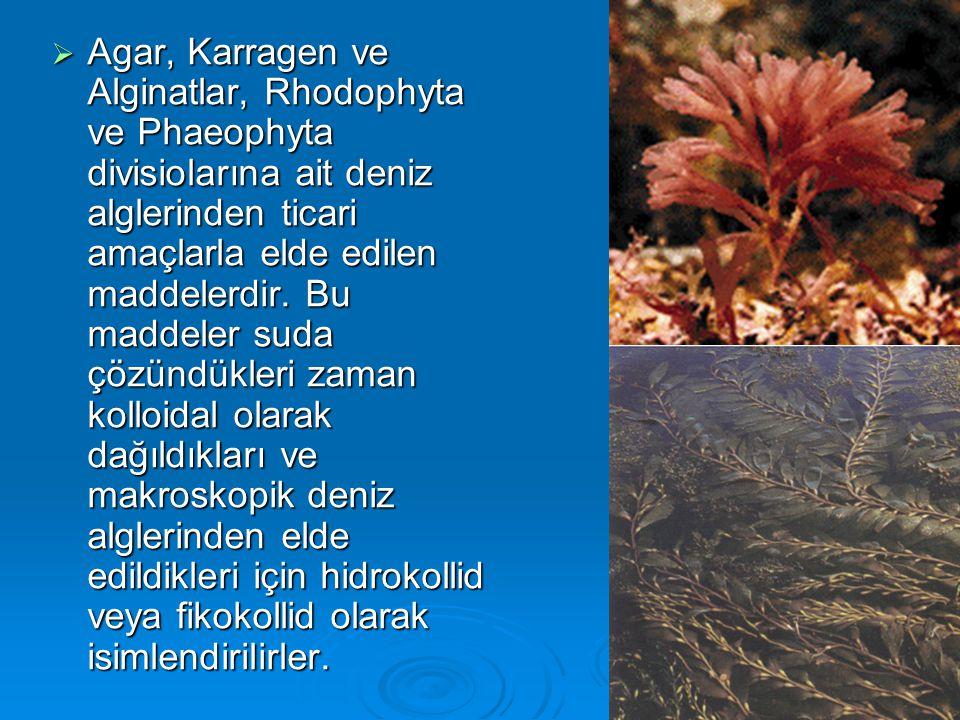  Agar, Karragen ve Alginatlar, Rhodophyta ve Phaeophyta divisiolarına ait deniz alglerinden ticari amaçlarla elde edilen maddelerdir. Bu maddeler sud