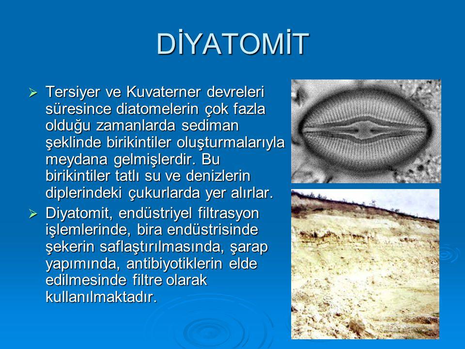 DİYATOMİT  Tersiyer ve Kuvaterner devreleri süresince diatomelerin çok fazla olduğu zamanlarda sediman şeklinde birikintiler oluşturmalarıyla meydana