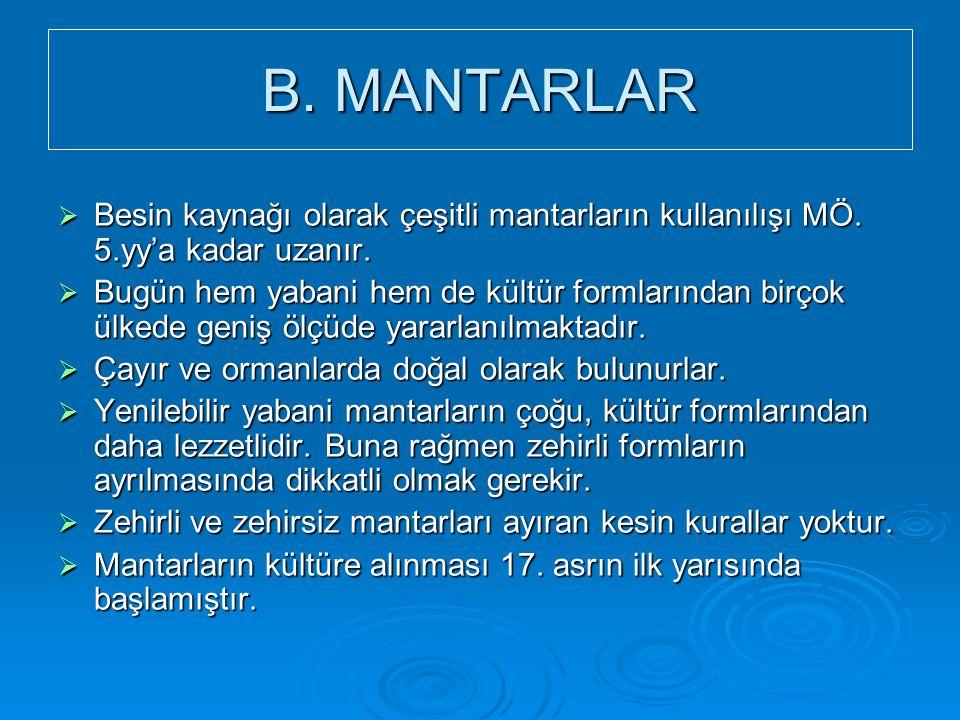 B. MANTARLAR  Besin kaynağı olarak çeşitli mantarların kullanılışı MÖ. 5.yy'a kadar uzanır.  Bugün hem yabani hem de kültür formlarından birçok ülke