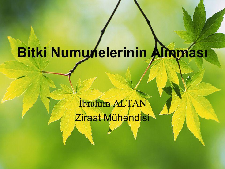 Bitki Numunelerinin Alınması İbrahim ALTAN Ziraat Mühendisi