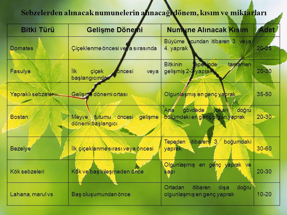 Sebzelerden alınacak numunelerin alınacağı dönem, kısım ve miktarları Bitki TürüGelişme DönemiNumune Alınacak KısımAdet DomatesÇiçeklenme öncesi veya