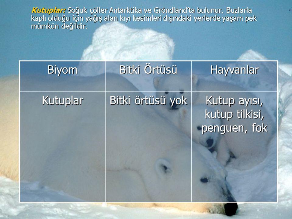 Kutuplar: Soğuk çöller Antarktika ve Gröndland'ta bulunur. Buzlarla kaplı olduğu için yağış alan kıyı kesimleri dışındaki yerlerde yaşam pek mümkün de