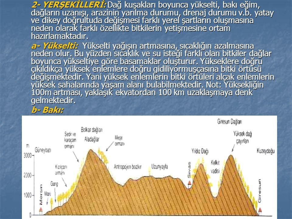 2- YERŞEKİLLERİ: Dağ kuşakları boyunca yükselti, bakı eğim, dağların uzanışı, arazinin yarılma durumu, drenaj durumu v.b. yatay ve dikey doğrultuda de