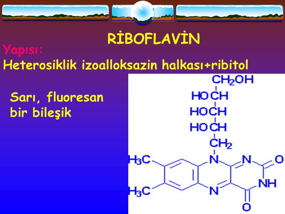 RİBOFLAVİN Yapısı: Heterosiklik izoalloksazin halkası+ribitol Sarı, fluoresan bir bileşik