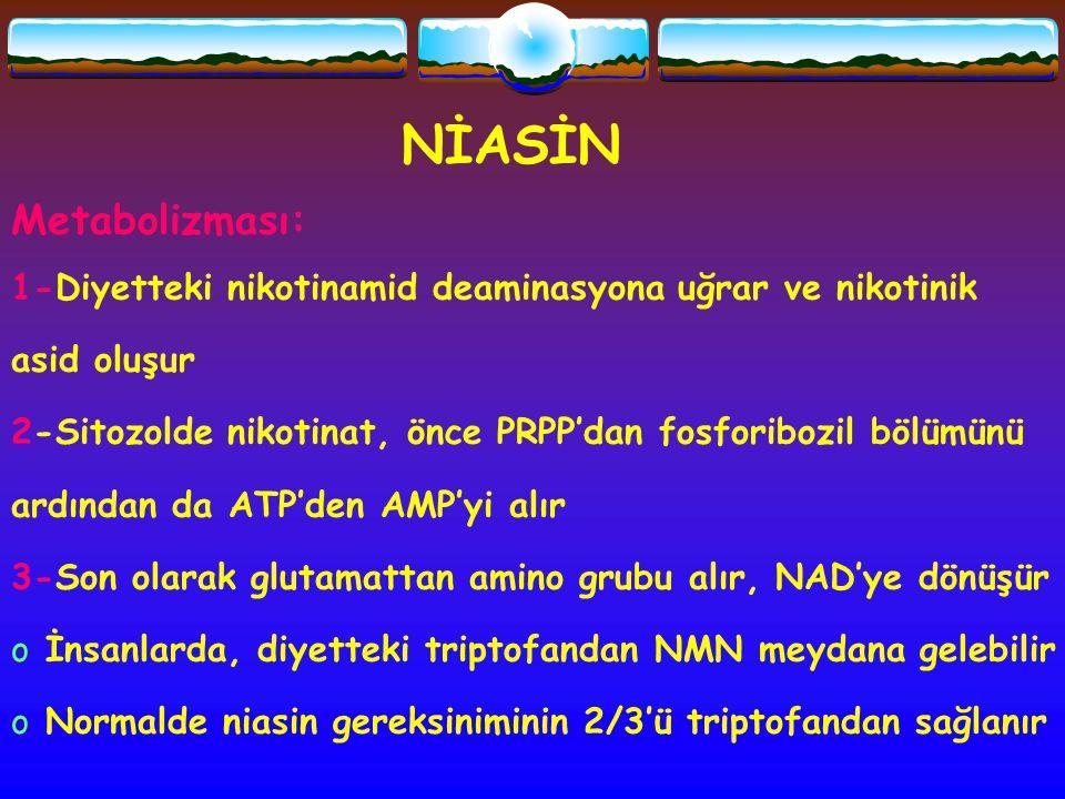 NİASİN Metabolizması: 1-Diyetteki nikotinamid deaminasyona uğrar ve nikotinik asid oluşur 2-Sitozolde nikotinat, önce PRPP'dan fosforibozil bölümünü a