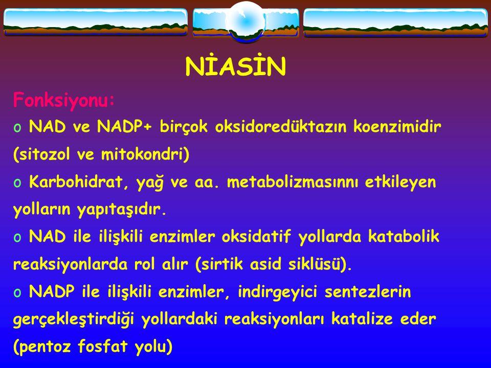 NİASİN Fonksiyonu: o NAD ve NADP+ birçok oksidoredüktazın koenzimidir (sitozol ve mitokondri) o Karbohidrat, yağ ve aa. metabolizmasınnı etkileyen yol