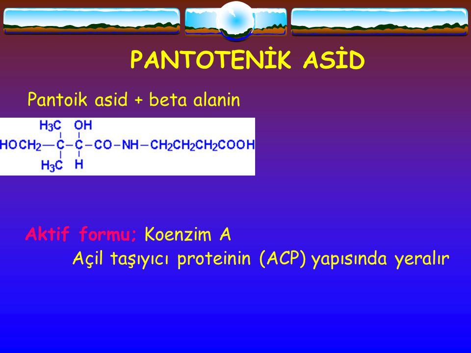 PANTOTENİK ASİD Pantoik asid + beta alanin Aktif formu; Koenzim A Açil taşıyıcı proteinin (ACP) yapısında yeralır