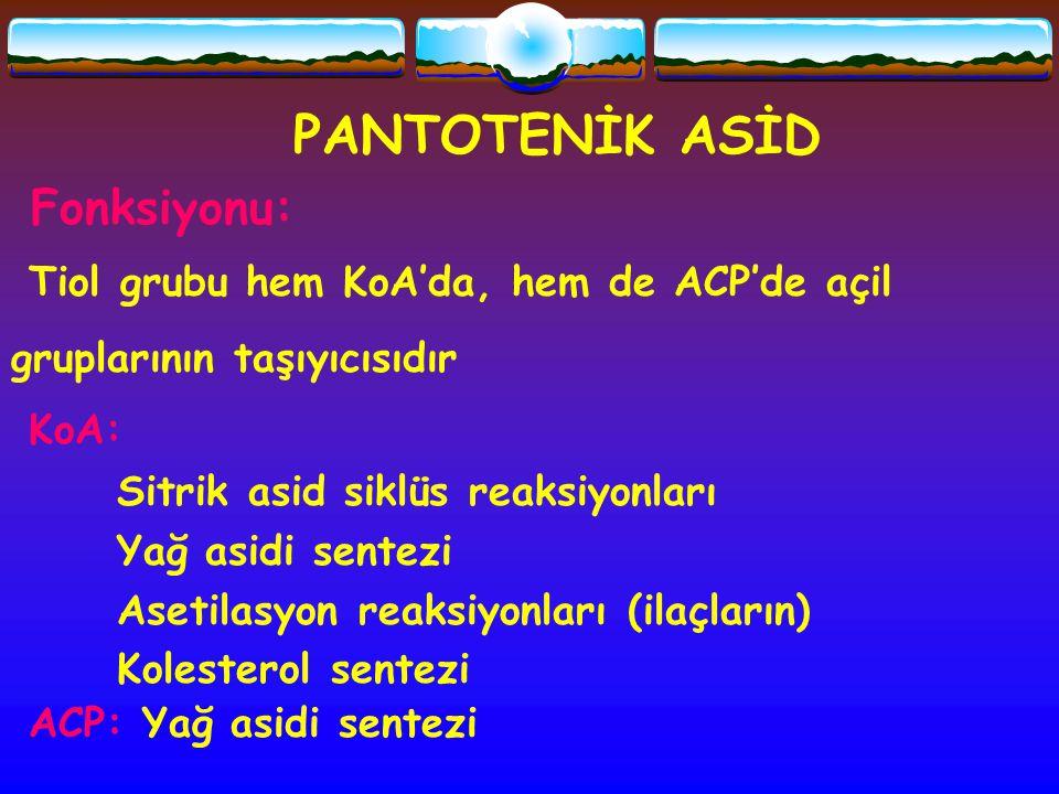 PANTOTENİK ASİD Fonksiyonu: Tiol grubu hem KoA'da, hem de ACP'de açil gruplarının taşıyıcısıdır KoA: Sitrik asid siklüs reaksiyonları Yağ asidi sentez