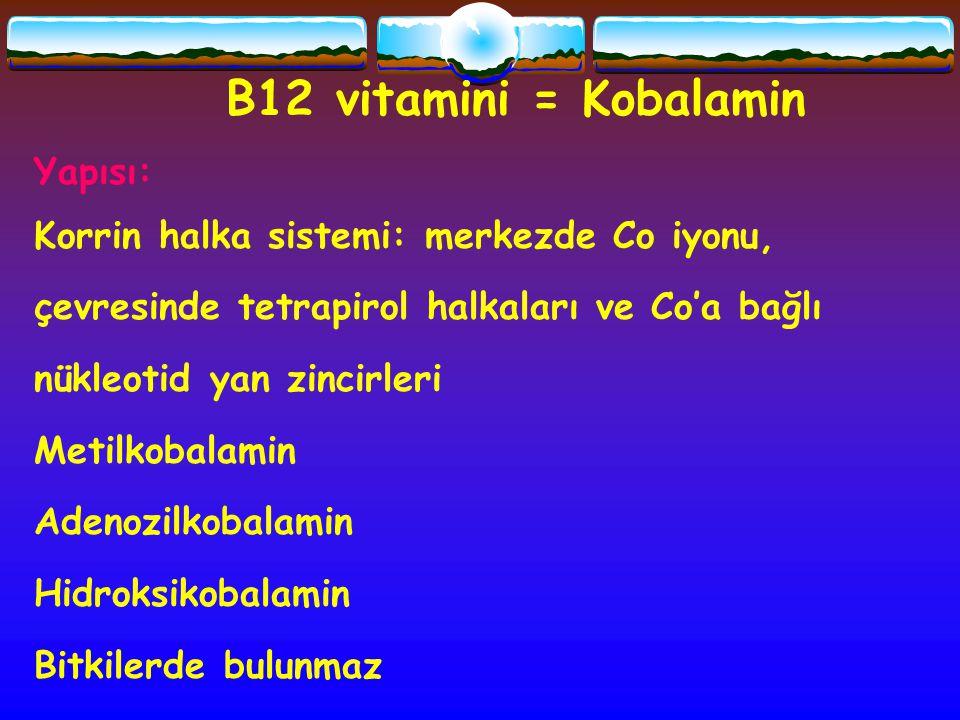 B12 vitamini = Kobalamin Yapısı: Korrin halka sistemi: merkezde Co iyonu, çevresinde tetrapirol halkaları ve Co'a bağlı nükleotid yan zincirleri Metil