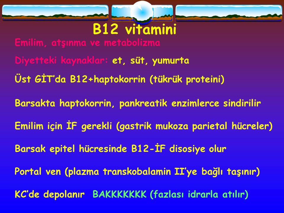 B12 vitamini Emilim, atşınma ve metabolizma Diyetteki kaynaklar: et, süt, yumurta Üst GİT'da B12+haptokorrin (tükrük proteini) Barsakta haptokorrin, p