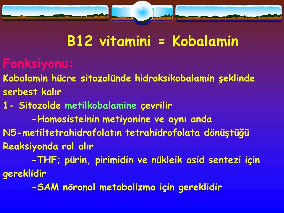 B12 vitamini = Kobalamin Fonksiyonu: Kobalamin hücre sitozolünde hidroksikobalamin şeklinde serbest kalır 1- Sitozolde metilkobalamine çevrilir -Homos