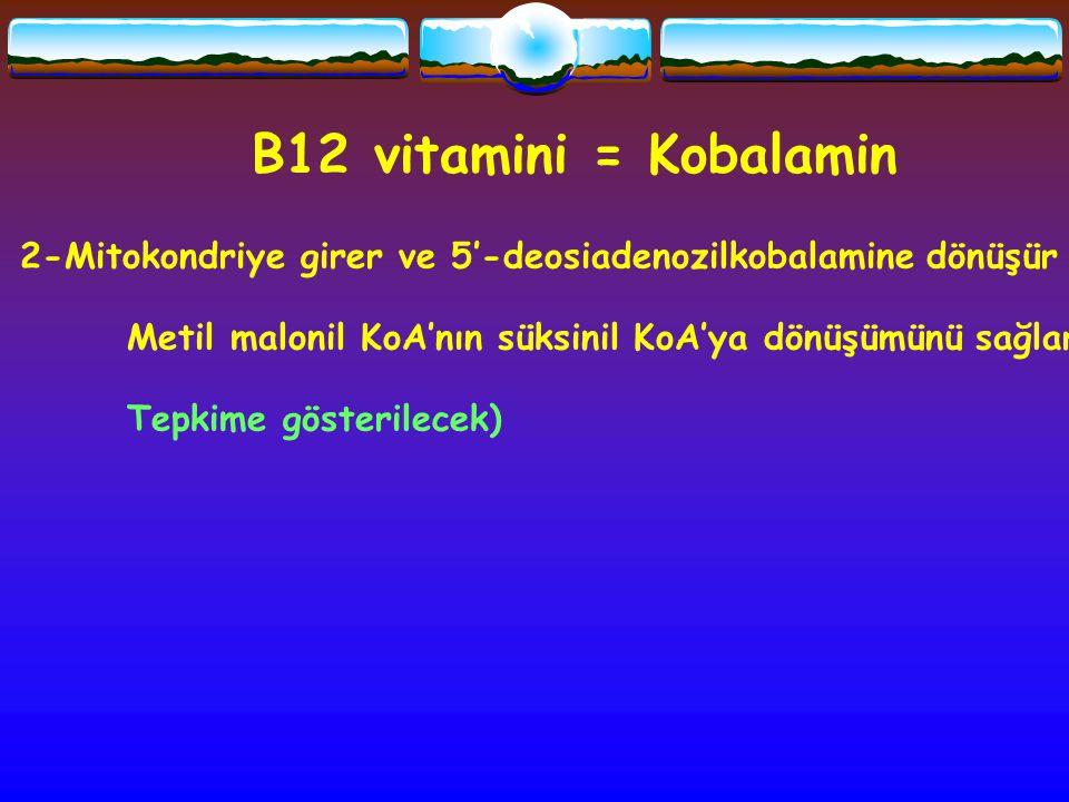 B12 vitamini = Kobalamin 2-Mitokondriye girer ve 5'-deosiadenozilkobalamine dönüşür Metil malonil KoA'nın süksinil KoA'ya dönüşümünü sağlar Tepkime gö