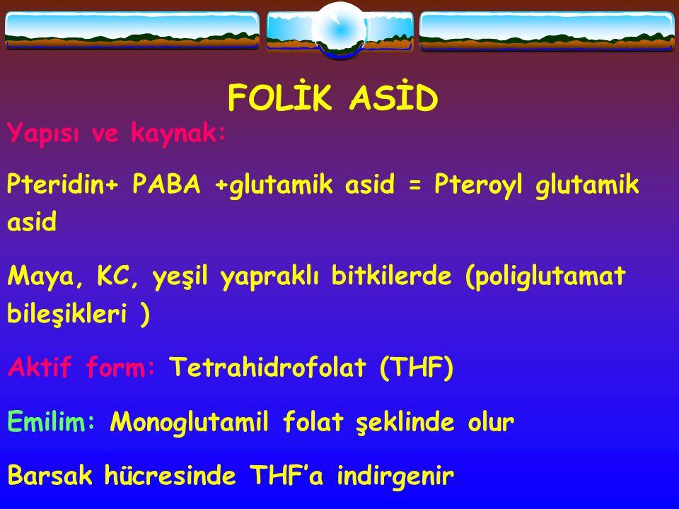 FOLİK ASİD Yapısı ve kaynak: Pteridin+ PABA +glutamik asid = Pteroyl glutamik asid Maya, KC, yeşil yapraklı bitkilerde (poliglutamat bileşikleri ) Akt