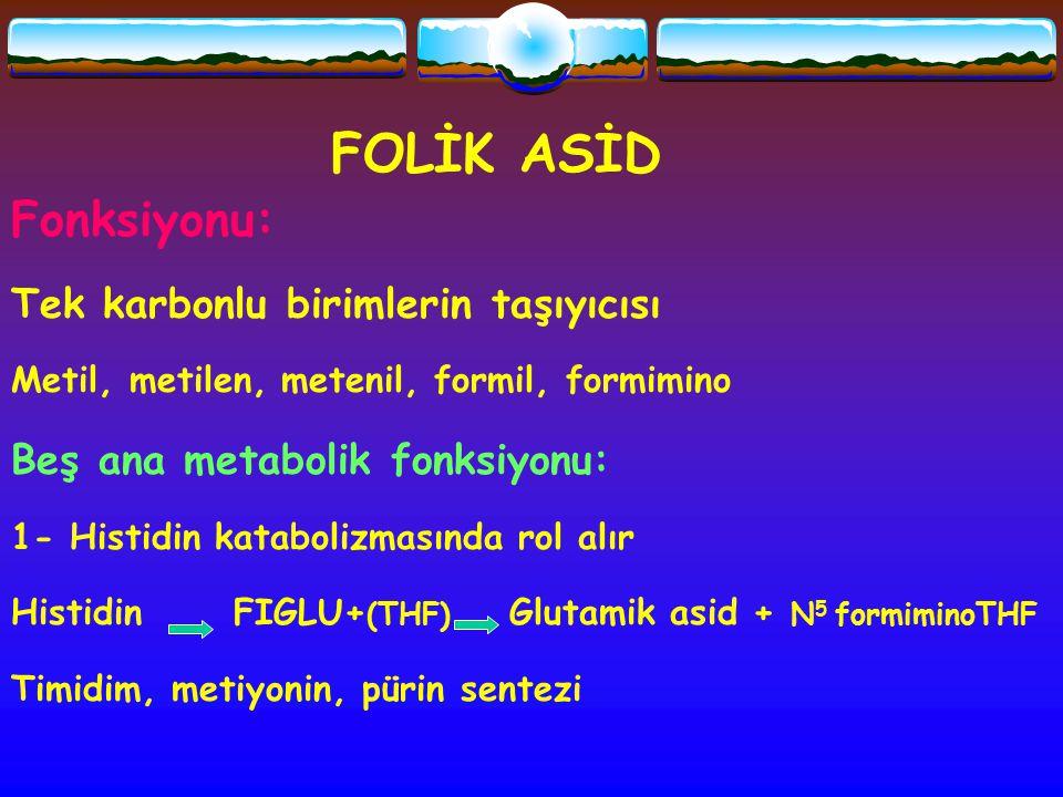 FOLİK ASİD Fonksiyonu: Tek karbonlu birimlerin taşıyıcısı Metil, metilen, metenil, formil, formimino Beş ana metabolik fonksiyonu: 1- Histidin katabol