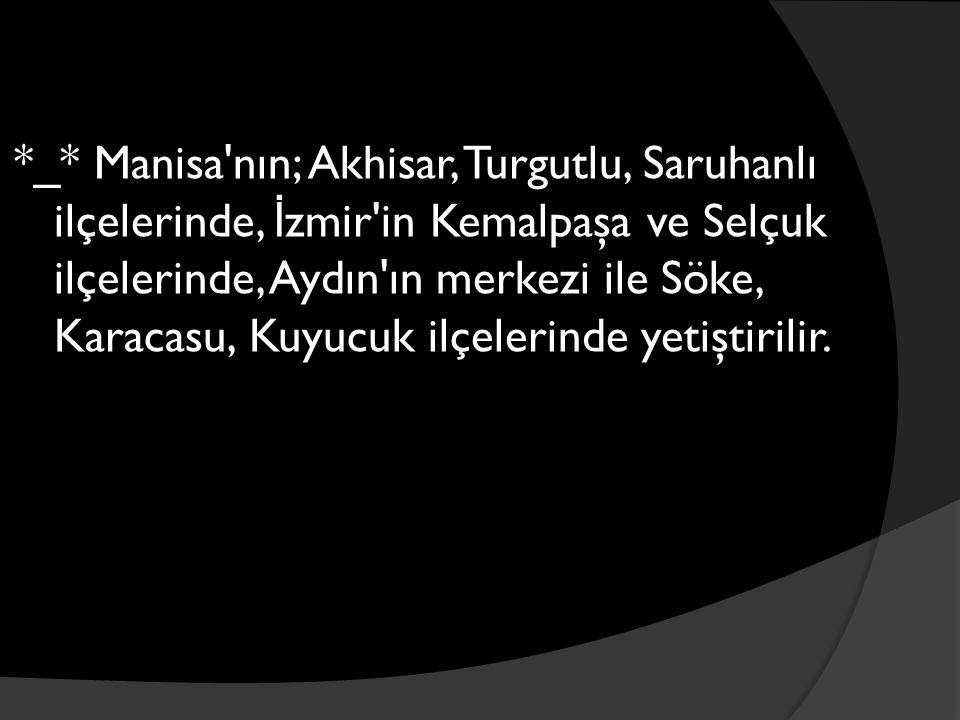 *_* Manisa nın; Akhisar, Turgutlu, Saruhanlı ilçelerinde, İ zmir in Kemalpaşa ve Selçuk ilçelerinde, Aydın ın merkezi ile Söke, Karacasu, Kuyucuk ilçelerinde yetiştirilir.