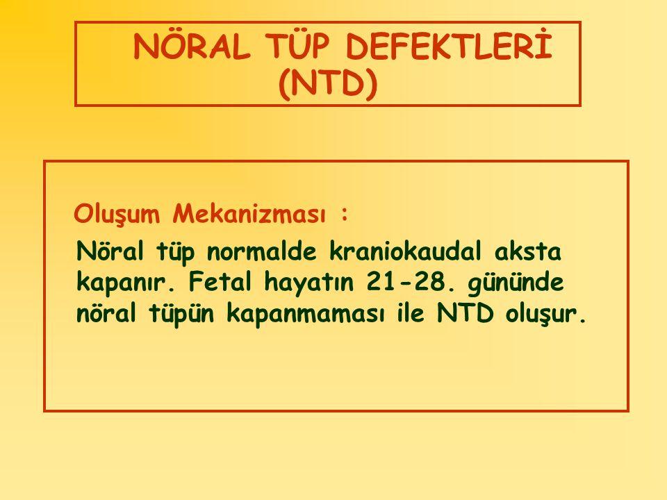 NÖRAL TÜP DEFEKTLERİ (NTD) Oluşum Mekanizması : Nöral tüp normalde kraniokaudal aksta kapanır. Fetal hayatın 21-28. gününde nöral tüpün kapanmaması il