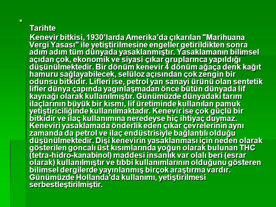  Tarihte Kenevir bitkisi, 1930'larda Amerika'da çıkarılan Marihuana Vergi Yasası ile yetiştirilmesine engeller getirildikten sonra adım adım tüm dünyada yasaklanmıştır.