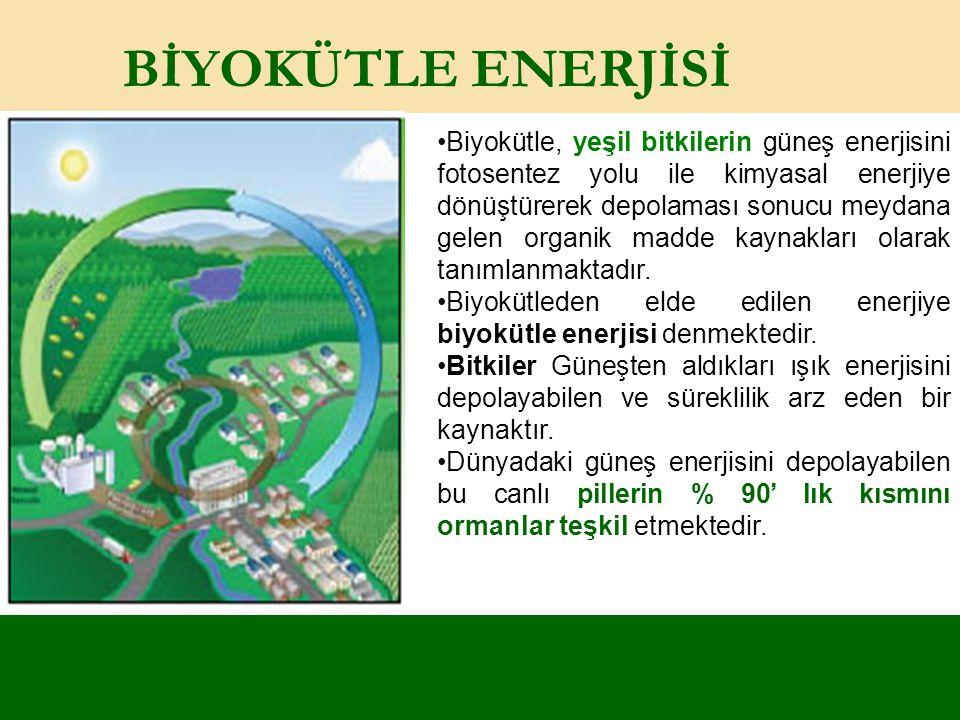 BİYOKÜTLE ENERJİSİ Biyokütle, yeşil bitkilerin güneş enerjisini fotosentez yolu ile kimyasal enerjiye dönüştürerek depolaması sonucu meydana gelen org