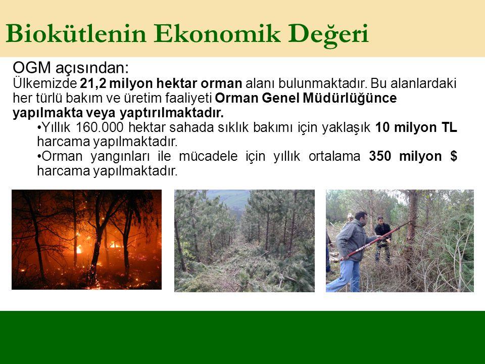 Biokütlenin Ekonomik Değeri OGM açısından: Ülkemizde 21,2 milyon hektar orman alanı bulunmaktadır. Bu alanlardaki her türlü bakım ve üretim faaliyeti