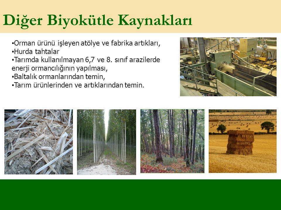 Diğer Biyokütle Kaynakları Orman ürünü işleyen atölye ve fabrika artıkları, Hurda tahtalar Tarımda kullanılmayan 6,7 ve 8. sınıf arazilerde enerji orm