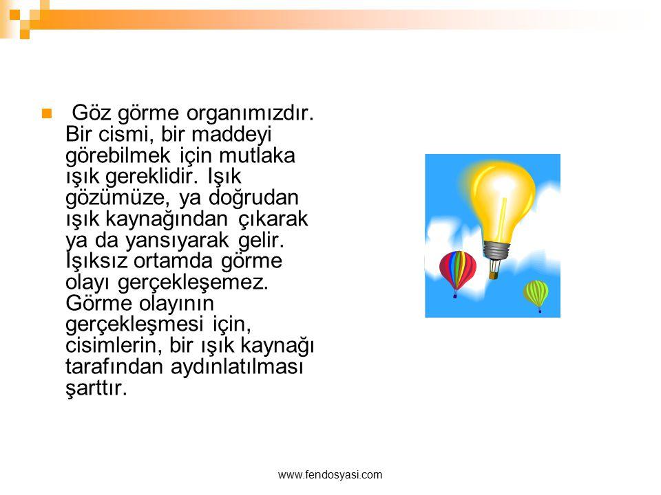 www.fendosyasi.com Göz görme organımızdır. Bir cismi, bir maddeyi görebilmek için mutlaka ışık gereklidir. Işık gözümüze, ya doğrudan ışık kaynağından