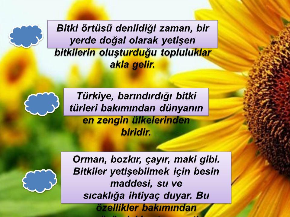 Türkiye, barındırdığı bitki türleri bakımından dünyanın en zengin ülkelerinden biridir. Bitki örtüsü denildiği zaman, bir yerde doğal olarak yetişen b