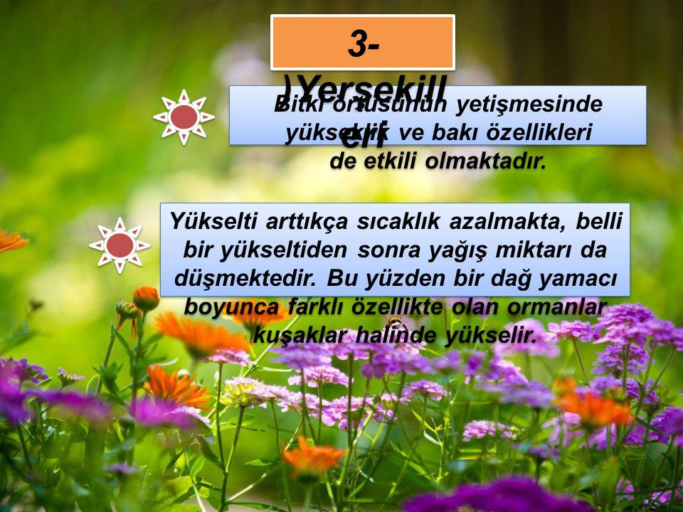 6- Türkiye'de 12.000'den fazla bitki türü bulunur.Bu yüzden dünyada ekvatoral bölgeden sonra oldukça zengin bir ülkedir.