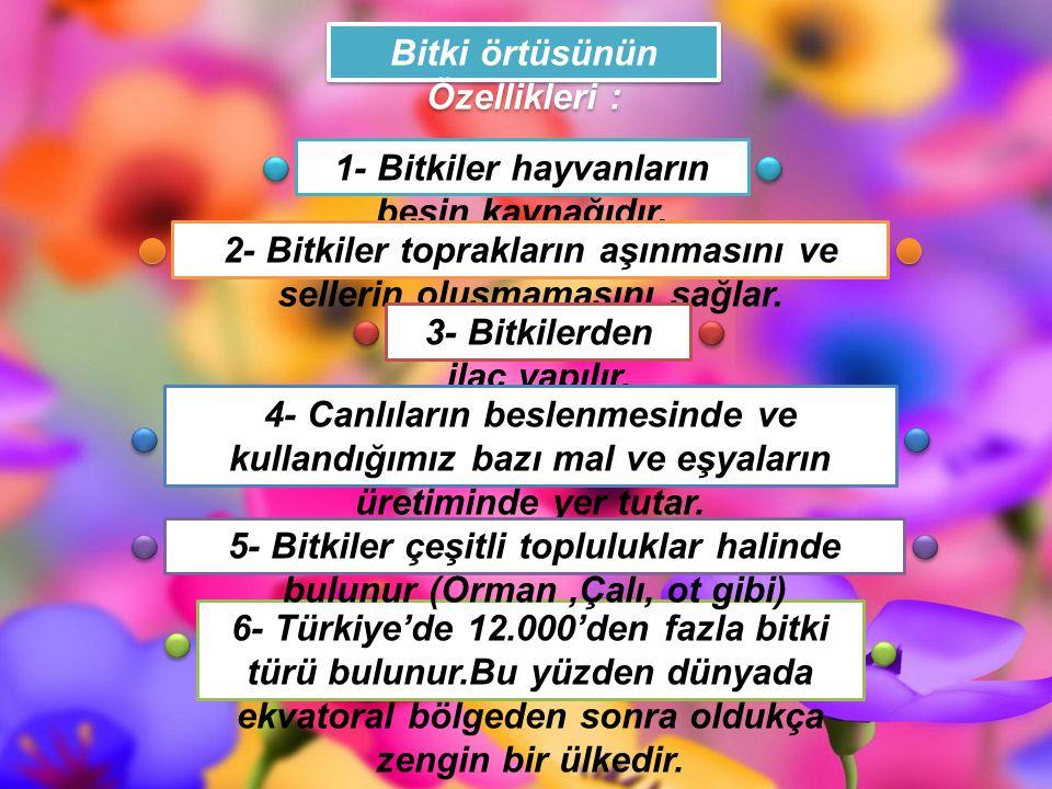 6- Türkiye'de 12.000'den fazla bitki türü bulunur.Bu yüzden dünyada ekvatoral bölgeden sonra oldukça zengin bir ülkedir. Bitki örtüsünün Özellikleri :