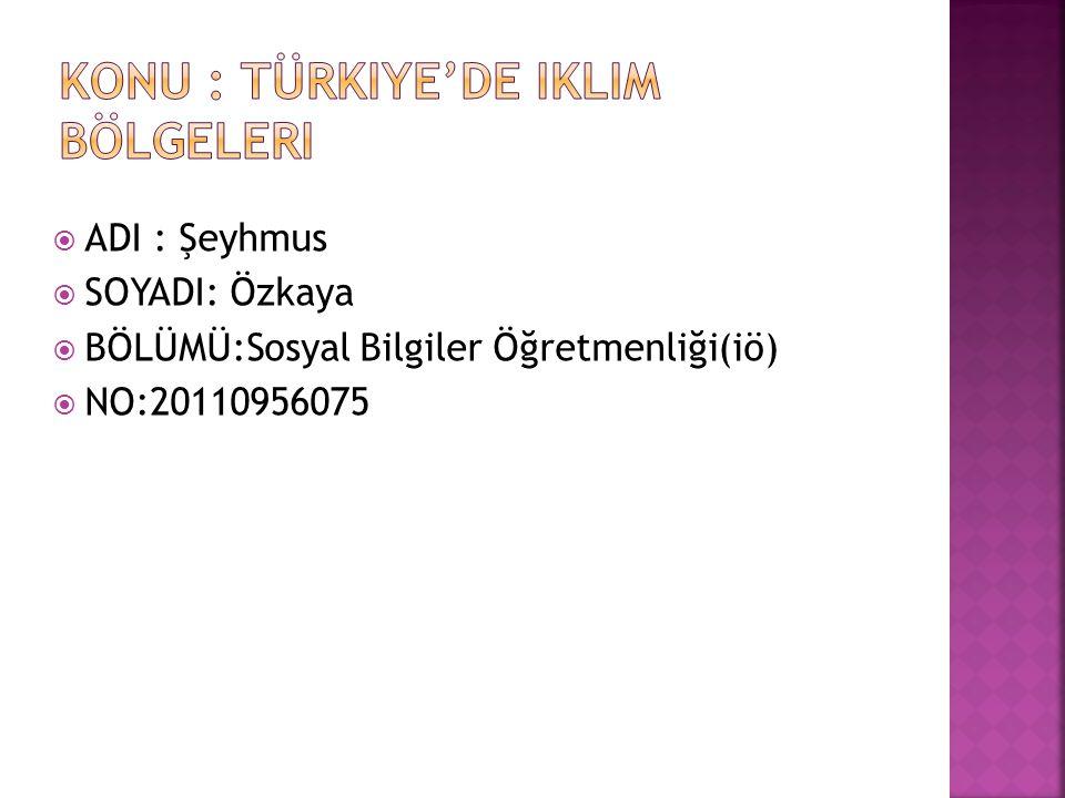  ADI : Şeyhmus  SOYADI: Özkaya  BÖLÜMÜ:Sosyal Bilgiler Öğretmenliği(iö)  NO:20110956075
