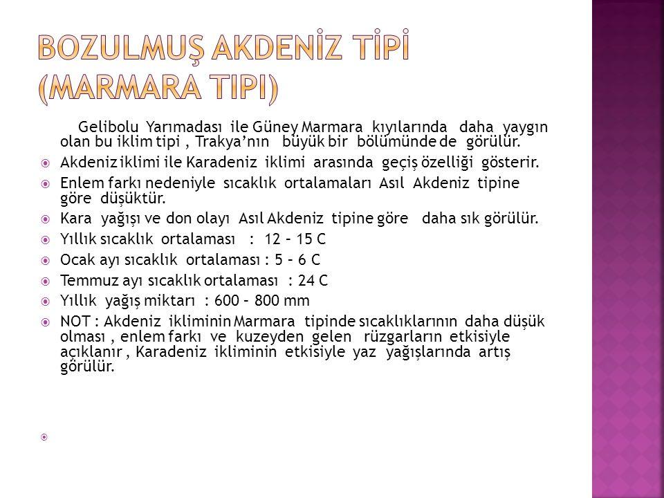 Gelibolu Yarımadası ile Güney Marmara kıyılarında daha yaygın olan bu iklim tipi, Trakya'nın büyük bir bölümünde de görülür.  Akdeniz iklimi ile Kara