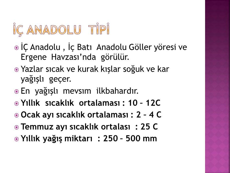  İÇ Anadolu, İç Batı Anadolu Göller yöresi ve Ergene Havzası'nda görülür.  Yazlar sıcak ve kurak kışlar soğuk ve kar yağışlı geçer.  En yağışlı mev