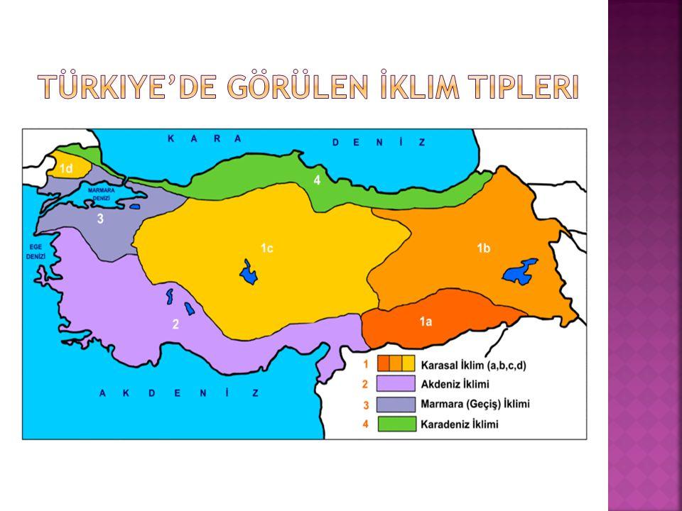  Türkiye,matematik ve özel konumu nedeniyle çeşitli iklim tiplerinin görüldüğü bir ülkedir.