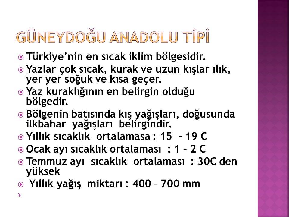  Türkiye'nin en sıcak iklim bölgesidir.  Yazlar çok sıcak, kurak ve uzun kışlar ılık, yer yer soğuk ve kısa geçer.  Yaz kuraklığının en belirgin ol