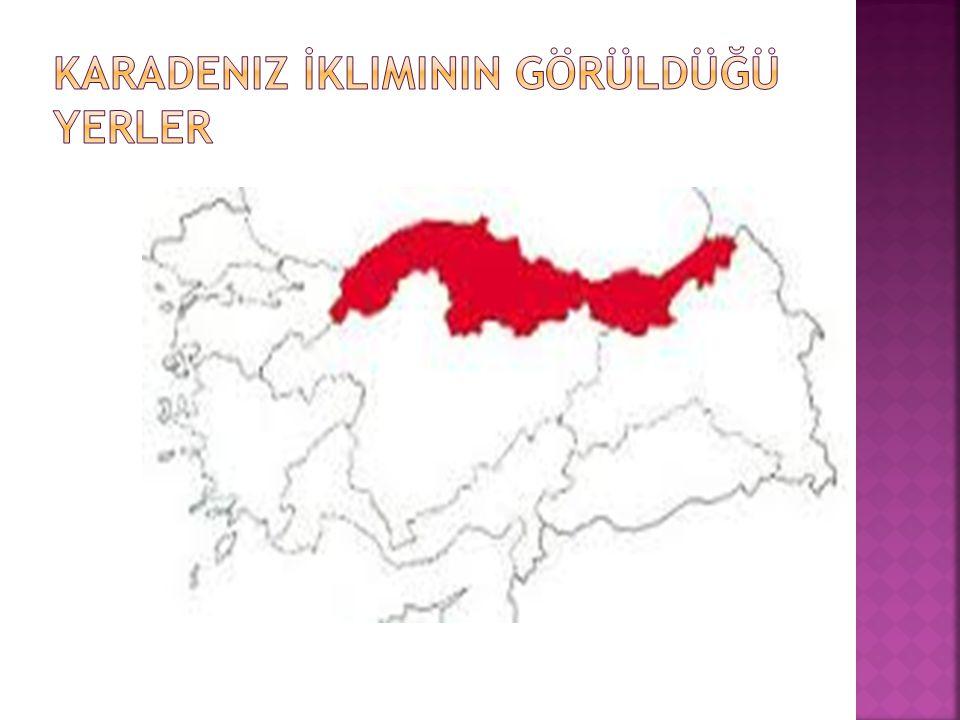  Karadeniz İkliminin Özelliği  Karadeniz Bölgesi'nin kıyı kesimlerinde görülür.