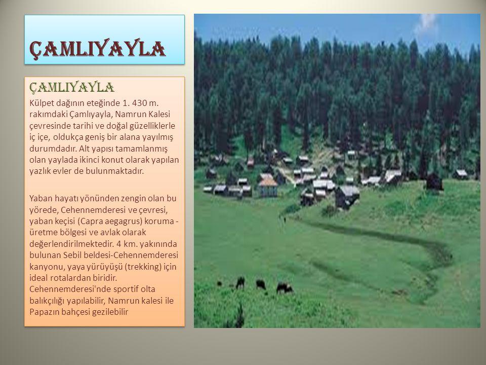 ÇamlIYAYLA ÇAMLIYAYLA Külpet dağının eteğinde 1. 430 m. rakımdaki Çamlıyayla, Namrun Kalesi çevresinde tarihi ve doğal güzelliklerle iç içe, oldukça g