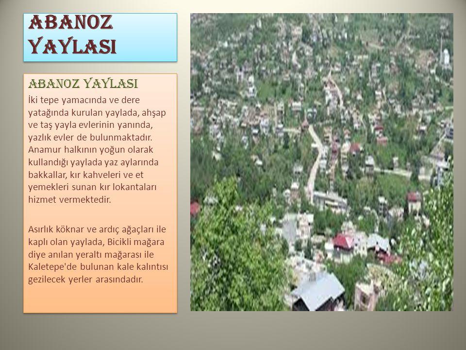 ABANOZ YAYLASI İki tepe yamacında ve dere yatağında kurulan yaylada, ahşap ve taş yayla evlerinin yanında, yazlık evler de bulunmaktadır. Anamur halkı