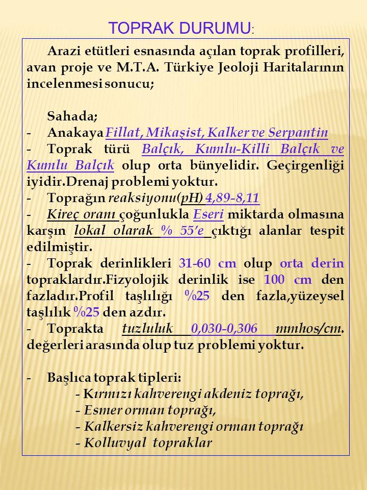 Arazi etütleri esnasında açılan toprak profilleri, avan proje ve M.T.A. Türkiye Jeoloji Haritalarının incelenmesi sonucu; Sahada; - Anakaya Fillat, Mi