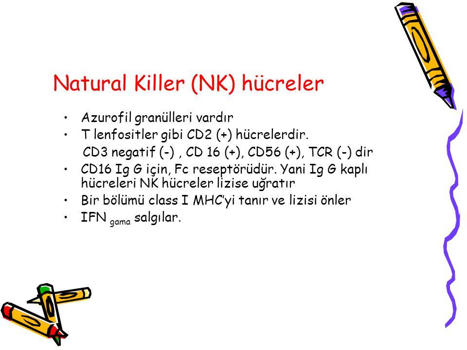 Natural Killer (NK) hücreler Azurofil granülleri vardır T lenfositler gibi CD2 (+) hücrelerdir. CD3 negatif (-), CD 16 (+), CD56 (+), TCR (-) dir CD16